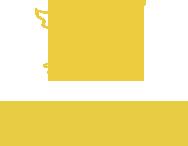 Memory In Memory Logo